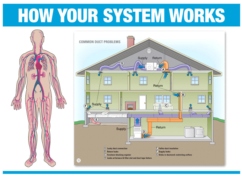 how duct system works